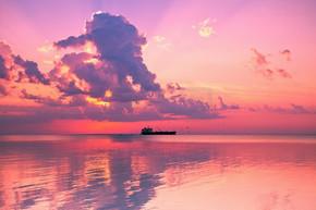 美丽的玫瑰海上日落