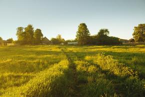 阳光洒在如诗如画村入口的