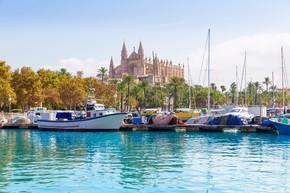 帕尔马-游艇码头马略卡岛大教堂