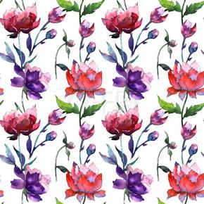 以水彩风格野花牡丹花卉图案.
