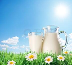 牛奶壶和玻璃与 chamomiles 在草地上。在背景上