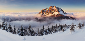 冬山景观自然