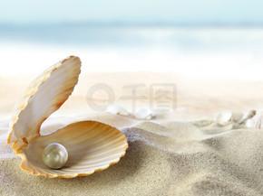 壳的一颗明珠
