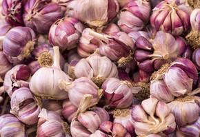 紫皮大蒜市场