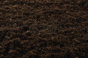 肥沃的菜园土纹理背景顶视图