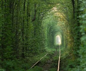 绿色隧道.