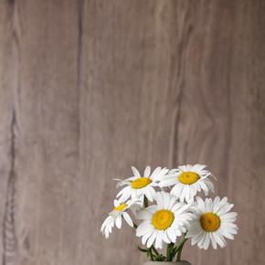 木制背景的花瓶上有美丽的菊花