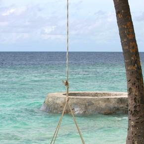 美丽的海滩与马尔代夫班多斯岛,棕榈树
