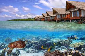 马尔代夫的热带水