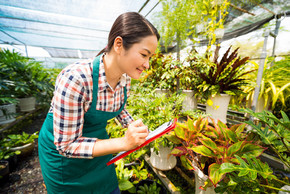 检查花的植物苗圃工人