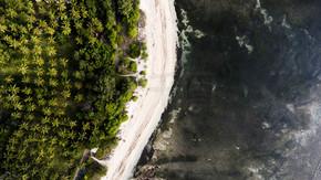 顶视图空中无人机照片的令人惊叹的海滩与珊瑚礁底部和热带棕榈树丛林.