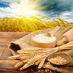 面包制备的有机成分