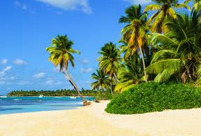 令人惊叹的热带海滩,棕榈树