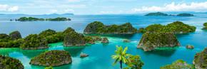 在拉贾安帕巴布亚新几内亚碧绿的海水中的绿色孤岛
