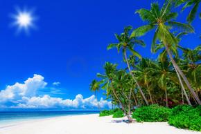棕榈海洋天空
