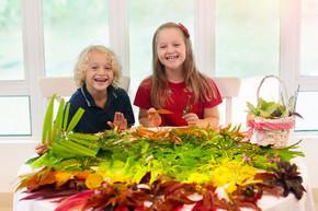 孩子们为学校的艺术项目挑选五颜六色的秋叶。男孩和女孩做图片粘合秋天叶子在彩虹颜色。幼儿工艺品。学前和幼儿园艺术作业.