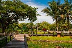 这条路是木头做的古晋到沙捞越文化村。婆罗洲,马来西亚