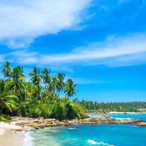 在斯里兰卡的热带海滩