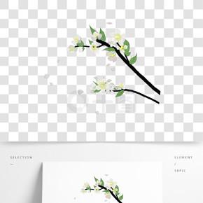 白色樱花装饰插画